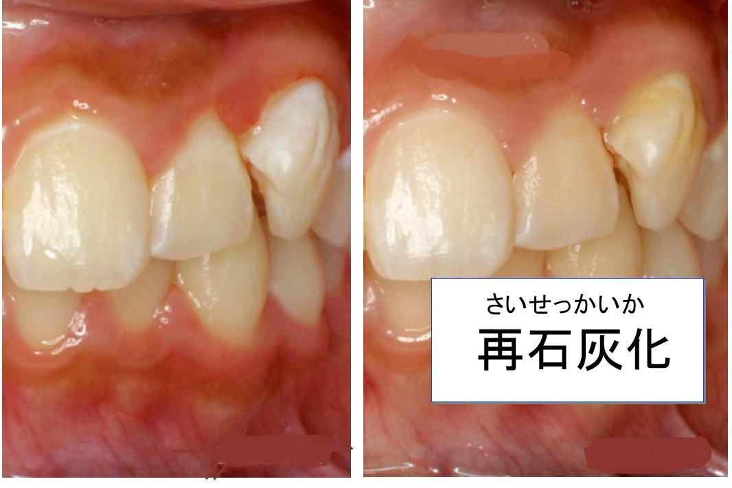 syouki1.jpg